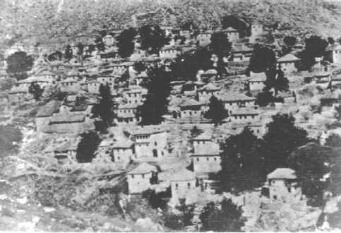 haliki-1920-b